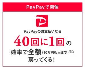 paypay40分の1